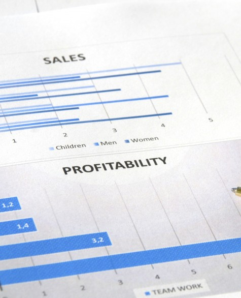 Sales and Profitability Report