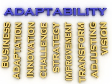 3-D adaptability word cloud